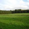 Enclosed field, Carmichael Estate