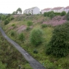 Disused railway, Cairnhill, Coatbridge