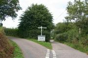 Chardstock: Birchill Cross