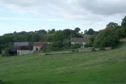 Chardstock: Churchill Farm