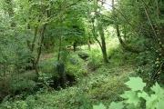Membury: below Lewsley Farm