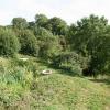Membury: footpath near Lewsley Cross