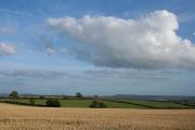 Wambrook: landscape near Four Gates