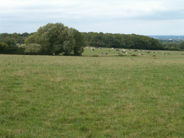Farmland at West Park Farm