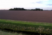 SE Holderness farmland