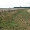 Fields and woods, near Bibury