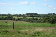 Witheridge: near Berry Castle