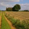 Field Near Hotham Looking East