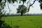 Farmland near Peatling Parva