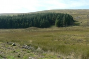 Moorland and forestry in Glen Beanie