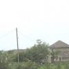 Fferm Ty-eiddw Farm