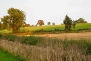 Farmland west of Whilton