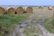 Straw bales near Ridgeway Farm