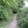 Track to Tapton Grove