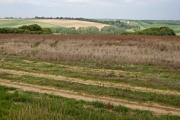 Towards Brockdale Plantation