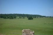 Farmland, Beaumaris