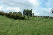 Farmland near Muckley Cross