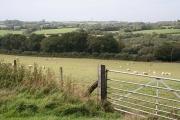 Creacombe: near Great Longland Plantation
