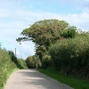 East Anstey: by Smallacombe Farm