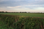 Farmland near Kirkby Mallory