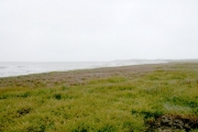 Rosslare Point