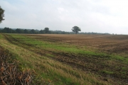 Stubble field at Fitches Grange
