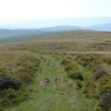 Track up southern slopes of Mynydd Llangorse