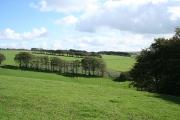 North Molton: near Long Holcombe Cross