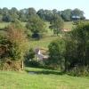 Whitehorn's Farm