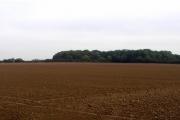 The view over farmland to Aldermen's Gorse