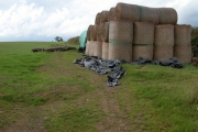Hay bales at Great Burridge
