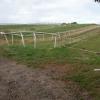 Gallops at Higher Eastington