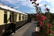 South Devon Railway, Nr Totnes