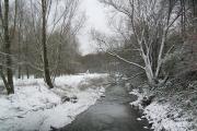 winter on medlock vale