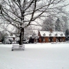 Ickwell in the snow