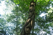 Waingroves woods tree carvings